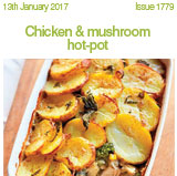 Chicken & Mushroom hot-pot