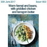 Warm fennel and beans with griddled chicken